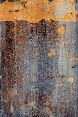 Orange Splash by J. McKenzie art print