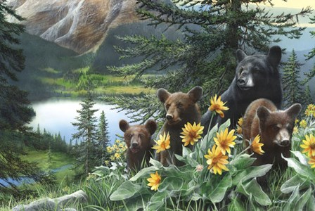 Basking in the Balsams by Kevin Daniel art print