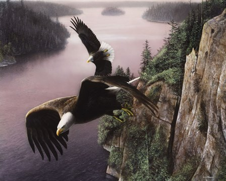 Wings Over the St. Croix by Kevin Daniel art print