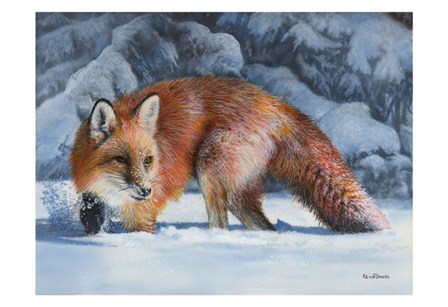 Fox at the Pines by Kevin Daniel art print