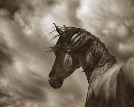 The Renegade by Barry Hart art print