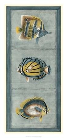 Tropical Fish Trio I by Vision Studio art print
