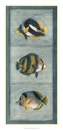 Tropical Fish Trio II by Vision Studio art print
