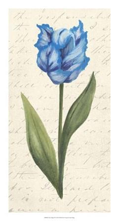 Twin Tulips IV by Grace Popp art print