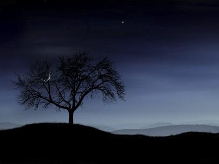 Tree and the Moon by Vlad Gerasimov/Stocktrek Images art print