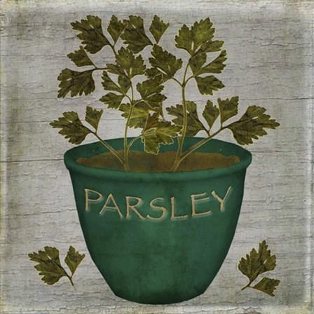 Herb Parsley by Beth Albert art print