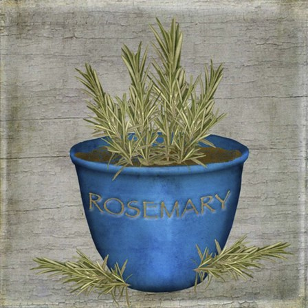Herb Rosemary by Beth Albert art print