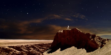 Artist's Depiction of a Lone Astronaut on Another Planet by Frank Hettick/Stocktrek Images art print