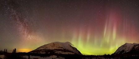 Red Aurora Borealis and Milky Way over Carcross Desert, Canada by Joseph Bradley/Stocktrek Images art print