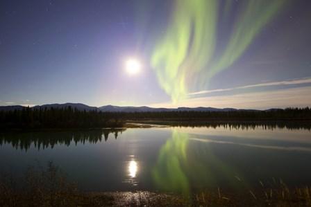 Aurora Borealis with Full Moon over the Yukon River in Canada by Joseph Bradley/Stocktrek Images art print