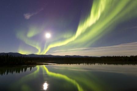 Aurora Borealis and Full Moon over the Yukon River, Canada by Joseph Bradley/Stocktrek Images art print