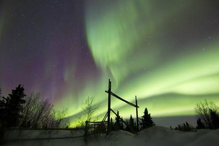 Aurora Borealis over a Ranch, Whitehorse, Yukon, Canada by Joseph Bradley/Stocktrek Images art print