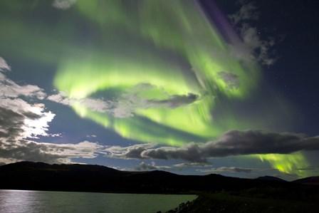 Aurora borealis over Fish Lake, Yukon, Canada by Joseph Bradley/Stocktrek Images art print