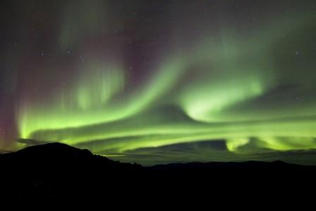 Aurora Borealis over Gray Peak, Whitehorse, Yukon Canada by Joseph Bradley/Stocktrek Images art print