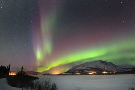 Aurora Borealis over Nares Lake, Carcross, Yukon, Canada by Joseph Bradley/Stocktrek Images art print