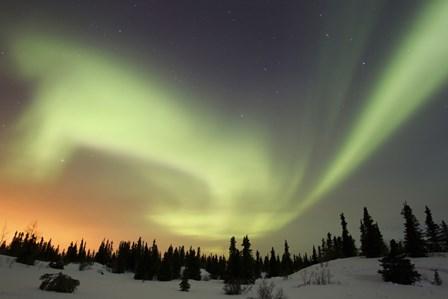 Aurora borealis over Ogilvie Mountains by Joseph Bradley/Stocktrek Images art print
