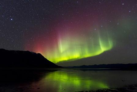 Aurora Borealis with Big Dipper over Kluane Lake, Yukon, Canada by Joseph Bradley/Stocktrek Images art print