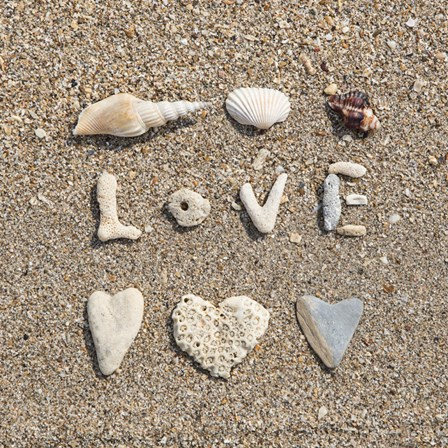 Beach Love by Andrea Haase art print