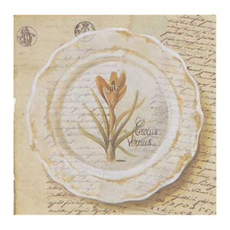 Assiette, Crocus vermus by Pascal Cessou art print