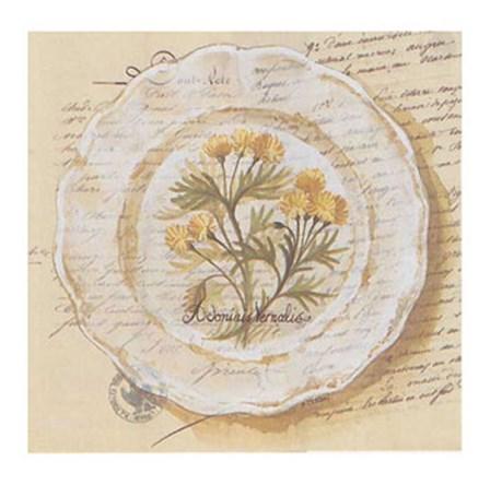 Assiette, Adonis Vernalis by Pascal Cessou art print
