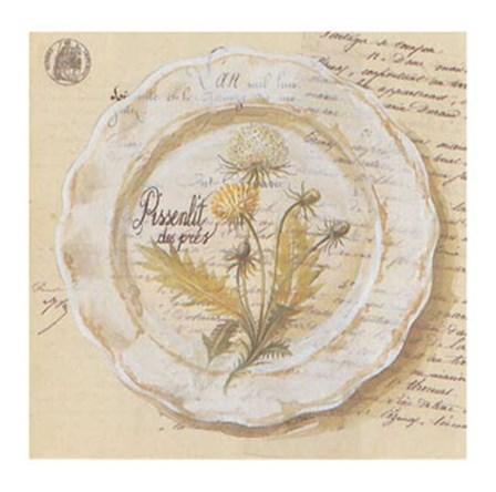 Assiette, Pissenlit des prs by Pascal Cessou art print