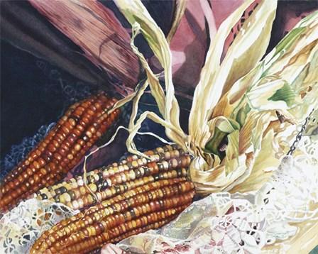 Indian Corn by Jane Freeman art print