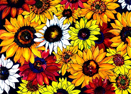 Sunflower Mix by Kate Larsson art print