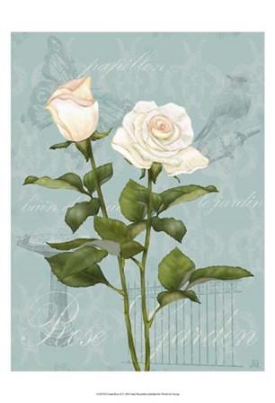 Cream Rose II by Jade Reynolds art print