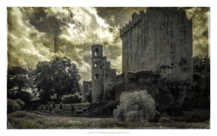Irish Castle Views III by Richard James art print