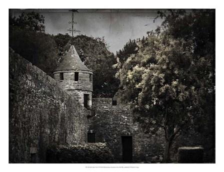 Irish Castle Views VI by Richard James art print
