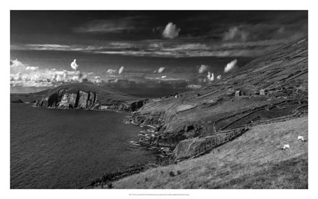 Views of Ireland III by Richard James art print