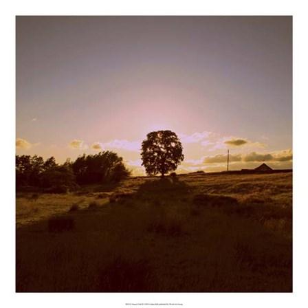 Sunset Field II by Lillian Bell art print