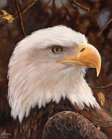 Eagle by Shiva art print