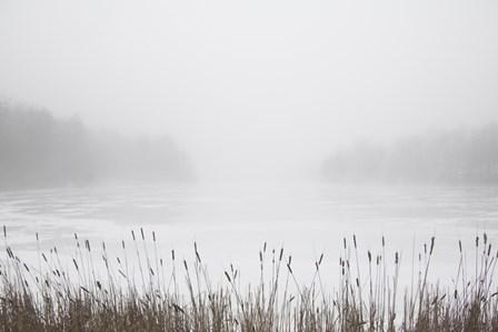 Foggy Reeds by Erin Clark art print