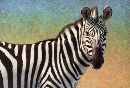 Portrait Of A Zebra by James W. Johnson art print