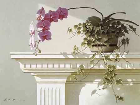 Orchid On Mantle by Zhen-Huan Lu art print
