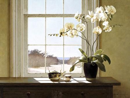 Orchids In The Window 2 by Zhen-Huan Lu art print