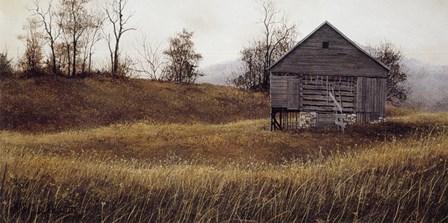 Golden Meadow by David Knowlton art print