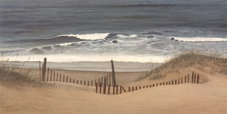 Outer Banks Beach by David Knowlton art print