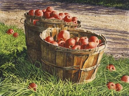 Apple Bushels by Michael Davidoff art print
