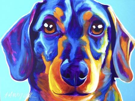 Dachshund Oscar by DawgArt art print