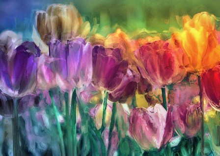 Tulip Farm by Mindy Sommers art print