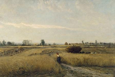 Harvest, 1851 by Charles Francois Daubigny art print