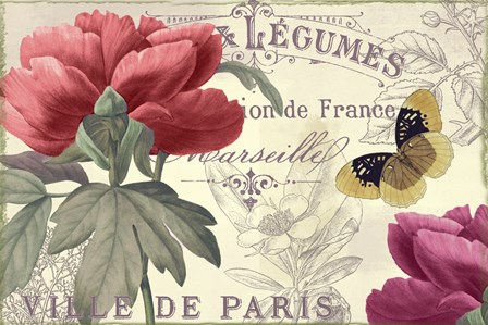 Petals of Paris V by Color Bakery art print