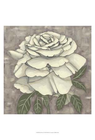 Silver Rose II by Chariklia Zarris art print