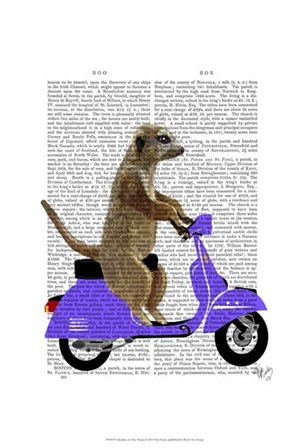 Meerkat on Lilac Moped by Fab Funky art print