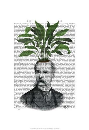Aspidistra Head Plant Head by Fab Funky art print