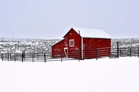 Red Barn In Winter by Amanda Lee Smith art print
