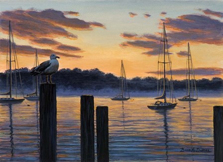 Sea Gull And Sails by Bruce Dumas art print
