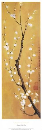 Cherry Blossom by Suzanna Mah Fong art print